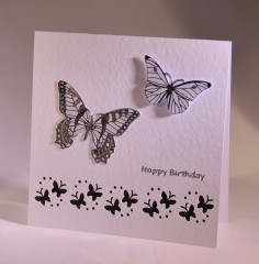 Silver Butterfly Bithday Card
