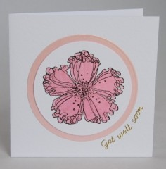Poppy Get Well Card